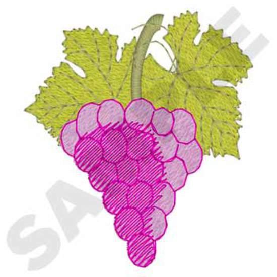 Wine /grapes Corner
