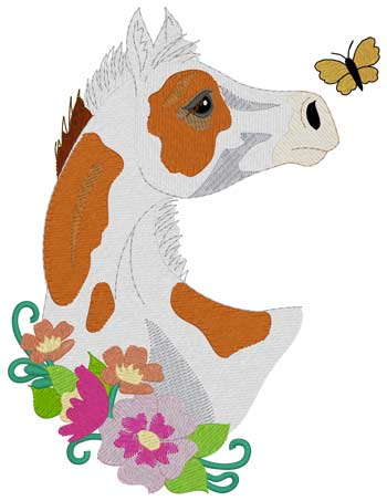 Paint Foal