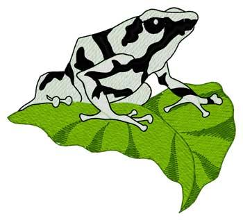 Poison Dart Frog
